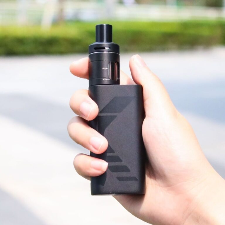 holding kanger subox mini v2 kit
